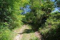 Le chemin au dessus de La Coume