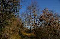 Le chemin au dessus de Rive d&#39Aigue