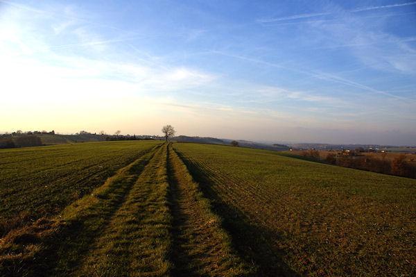 Le chemin vers Bouchères