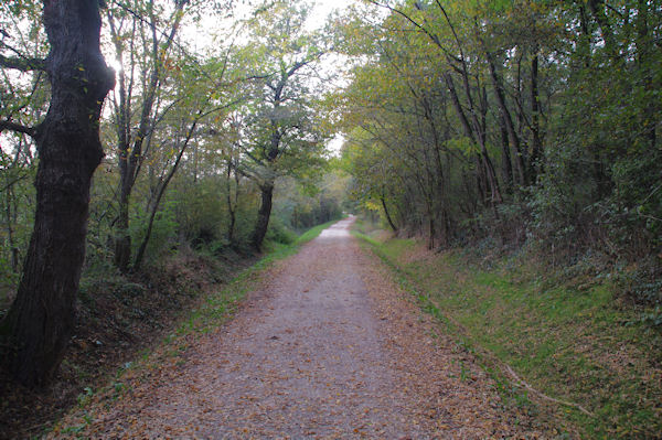 Le GR86 dans la vallée du Courbet
