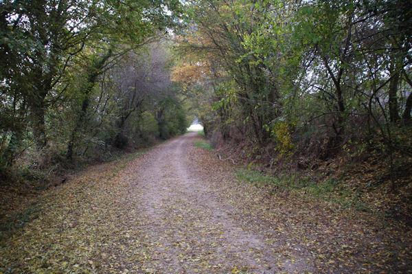 Le GR86 dans la vallée de l_Aussonnelle vers Metgé