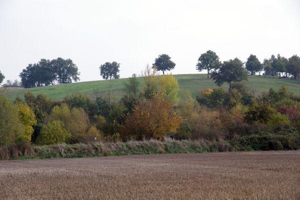 Le GR86 dans la vallée de l_Aussonnelle après le Bois de Lamothe