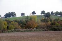 Le GR86 dans la vallee de l'Aussonnelle apres le Bois de Lamothe