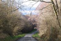 La route vers le lac sur le ruisseau de Tabernole