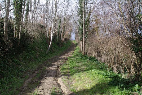 Le chemin remontant vers Deyme