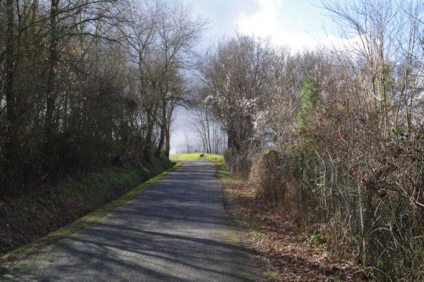 Sur la D95 vers Courtinade