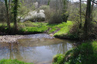 Le ruisseau de La Louge