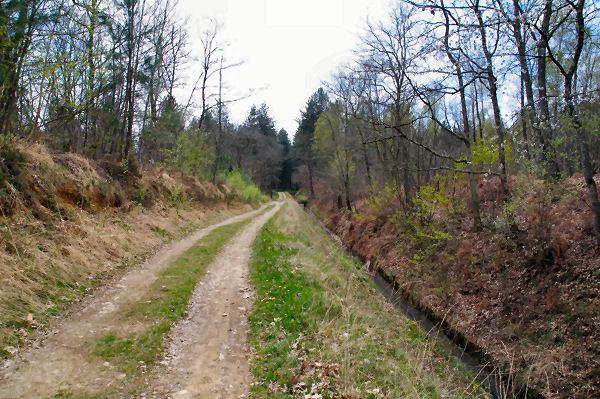 Le GR86 le long du canal de Franquevielle à Cardeilhac
