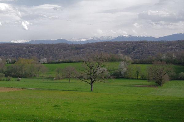 Point de vue sur les Pyrénées depuis Les Closes