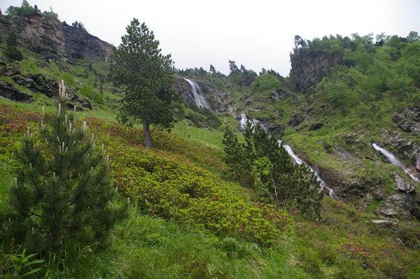 Un torent provenant du Cap des Hounts-secs