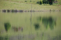 Reflets sur lac du Touch