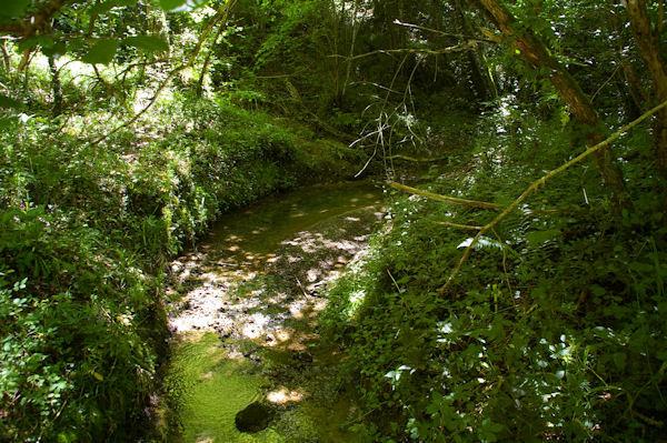 Le Touch dans la forêt de Lilhac