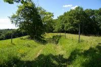 Le GR86 entre La Carretere et le Bois de Morthe