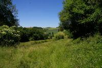 En descendant de Fabas vers la vallee du Touch sur le GR86