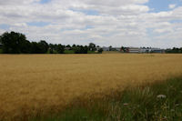 La Zone d'Activites de Ribaute depuis l'aerodrome de Toulouse - Lasbordes