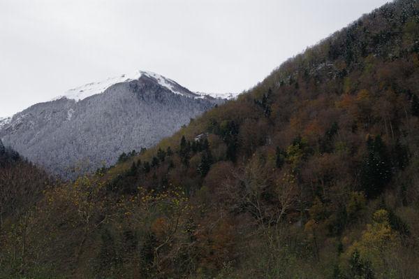 Le Mont du Lis enneigé depuis la D46