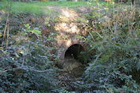 Un petit pont sous Le Pequer