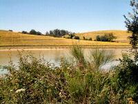 Lac du Laragou, rive sud