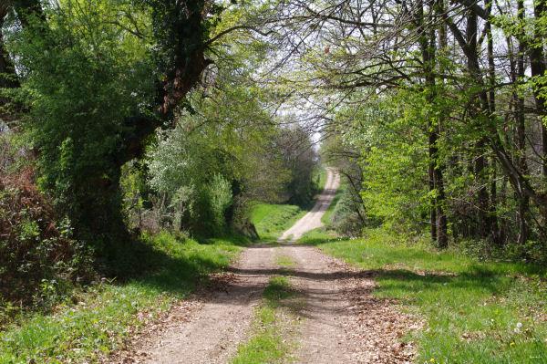 Le GR86 vers la Coumère