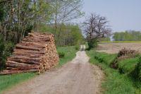 Le GR86 entre Le Sarrot et La Coumere