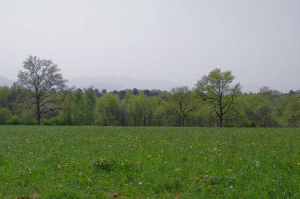 A la sortie de Séphis, en fond, les Pyrénées dans la brume