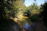 Le chemin est parfois humide dans le bois de Fages