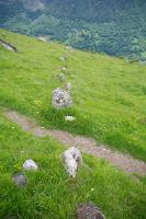 L'alignement de Peyrelade long de 270m