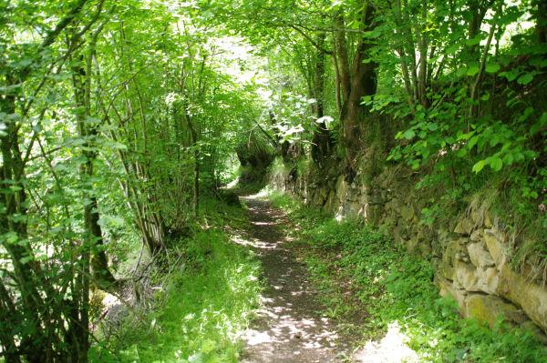Le sentier menant à Bernet