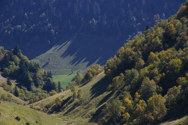 Le vallon du ruisseau de Colantique