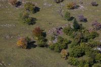 Quelques arbres couleur automne au dessus de Bourg d'Oueil