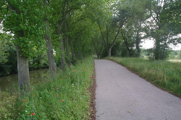 Sur le Canal du Midi vers Lamarasse