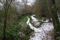 Le chemin sous La Bourdasse