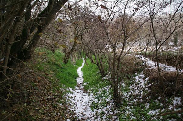 Le sentier descendant vers La Bofe