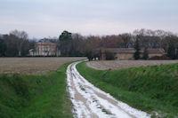Chateau Bruxelles
