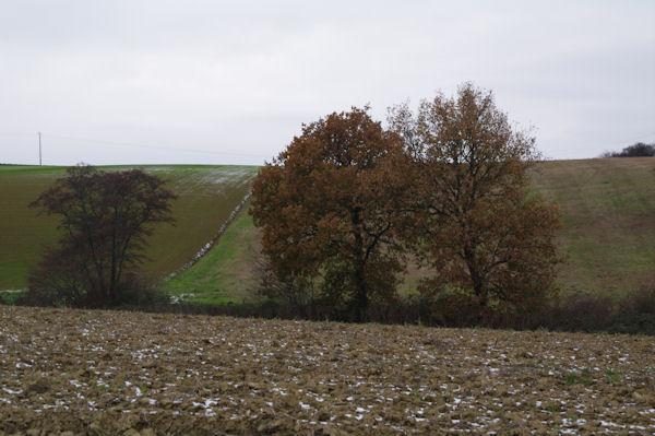 Le vallon du ruisseau de la Boytouse