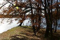 L'étang de l'Orme Blanc