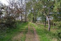 La piste Robert Thomas à la sortie de Pouvouville