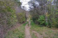 Le sentier remontant vers l'oppidum gaulois de Cluzel