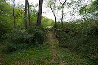 Petit pont sur le Ninet entre Millet et Beaufort