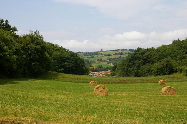 Un vallon qui descend vers la vallée de la Louge depuis Esbaylès