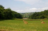 Un vallon qui descend vers la vallee de la Louge depuis Esbayles