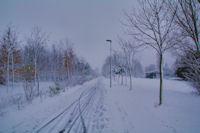 Le Parc de la Plaine sous la neige