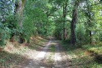 Le chemin vers le chateau Bouville