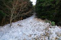 Une coulée de neige dans le Bois d_Echère