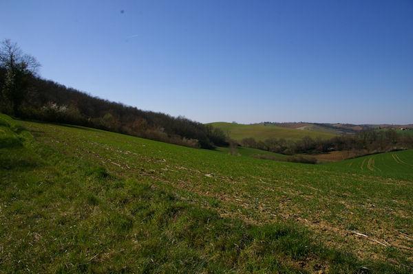 Le vallon du ruisseau du Bousquet