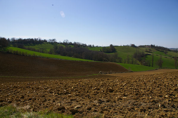 Le vallon du ruisseau de Jouanelon