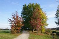 Paysages d'automne au bord du Lac du Val de Saune