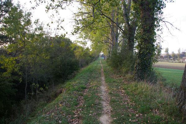 Le chemin au bord de la Saune