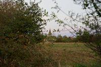 L&#39eglise de Rieumes est en vue depuis Gratte Cuq