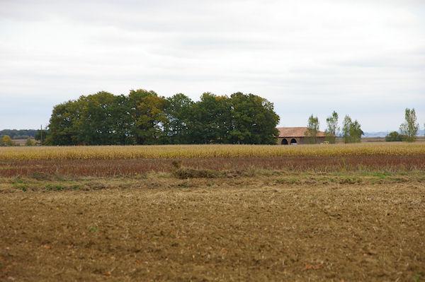 Bordeneuve depuis la sortie du Bois de la Hillère